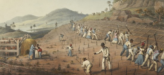 Ten Views in the Island of Antigua, in which are r - caption: 'Digging the Cane-holes'